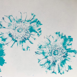Gerbera print in turquoise paint on paper.